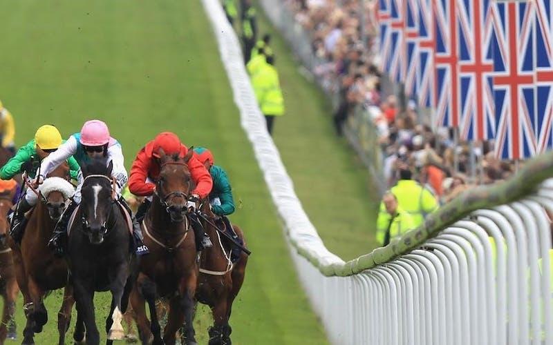 The Jockey Club | Walpole member