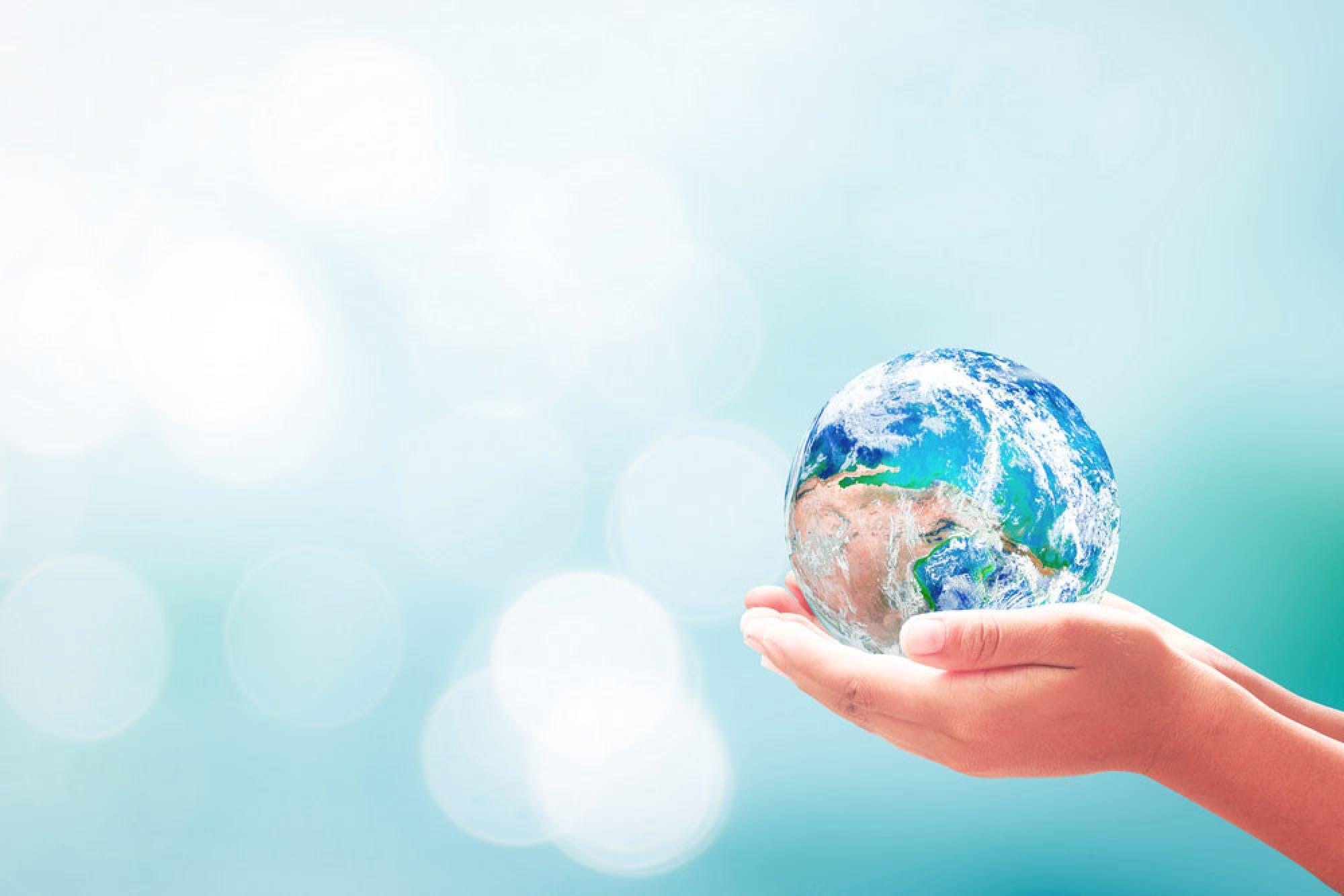 British Luxury Sustainability Manifesto The Working Groups: An update