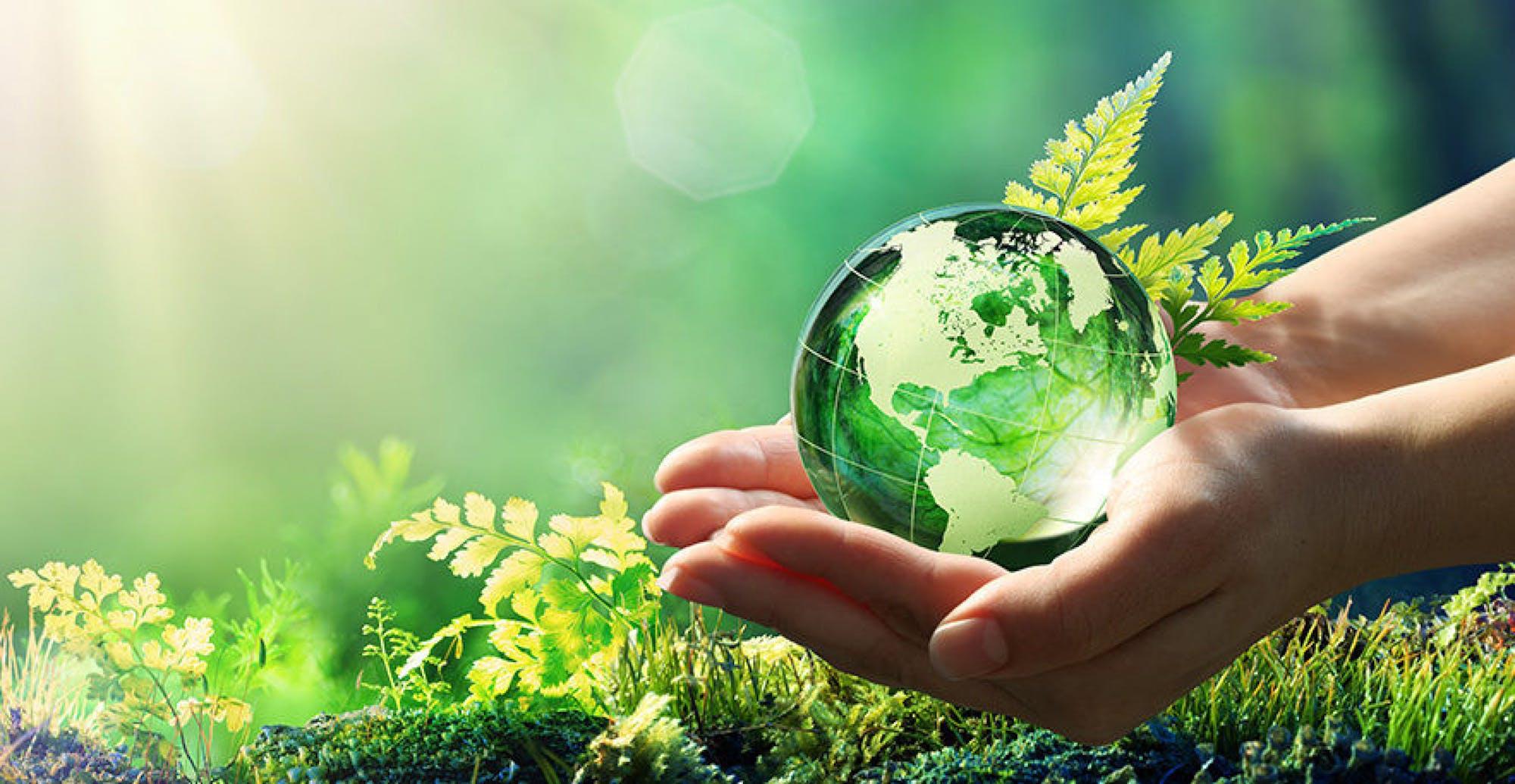 British Luxury Sustainability The Report