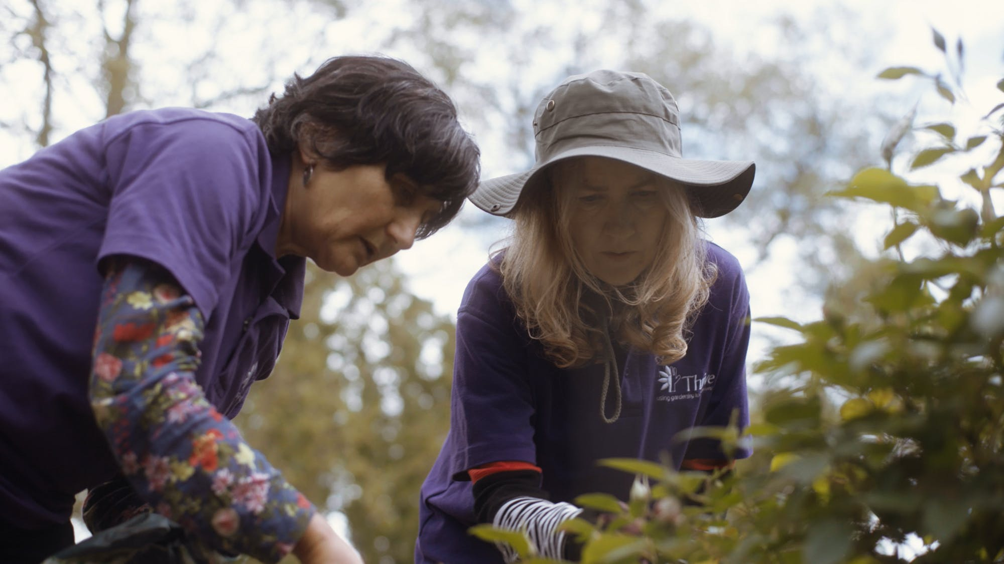 Love Letters from Britain Jo Malone London: Healing through Horticulture