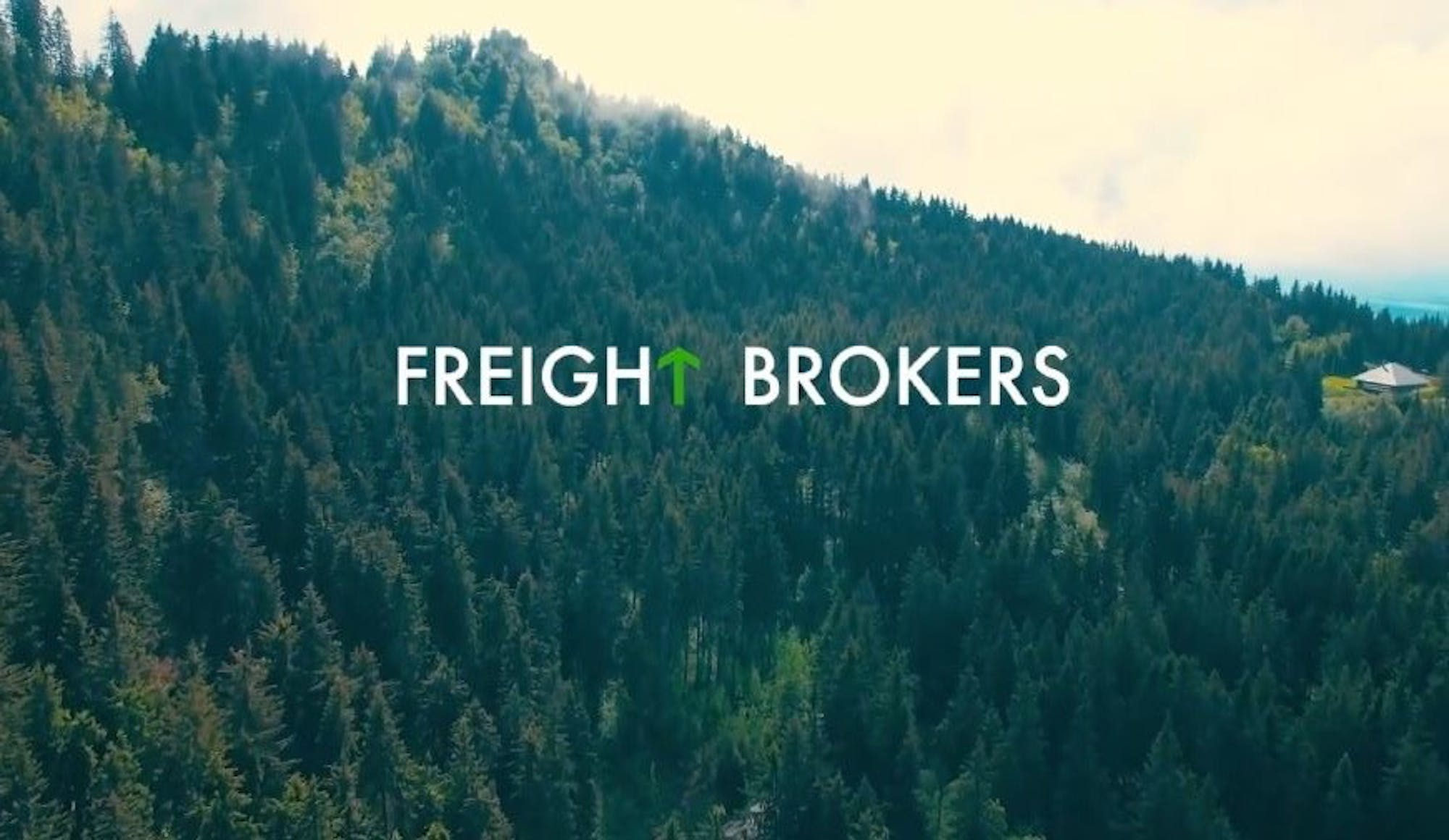 Sustainability Stories  Freight Brokers becomes carbon positive